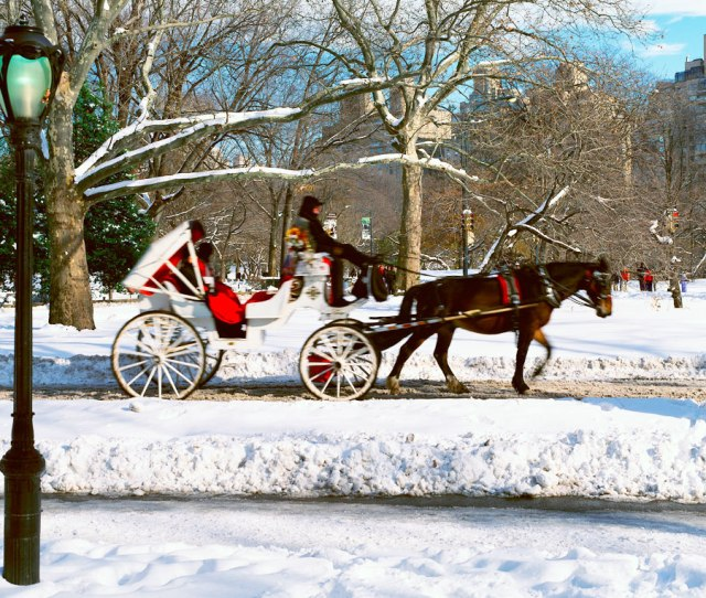 Panoramic View Of Snowy City Street Lamps Horse And Carriage In Central Park Manhattan